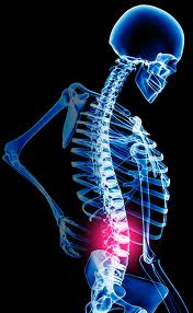 Best back exercises are those you can faithfully do that reduce pain and improve quality of life.