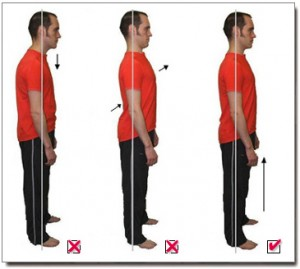 While In the standing posture forward head posture and a flat back should not be emphasized